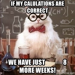 Chemistry Cat - if my calulations are correct we have just               8 more weeks!