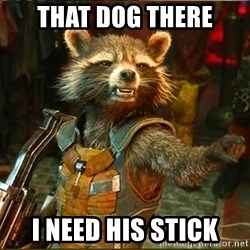Rocket Raccoon STFU - That dog there i need his stick