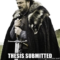 Ned Stark -  Thesis submitted