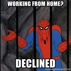 Spider Man - working from home? declined