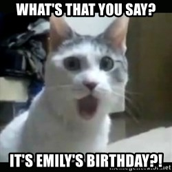 Surprised Cat - What's that you say? It's Emily's birthday?!