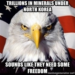 Freedom Eagle  - Trillions in minerals under north korea sounds like they need some freedom