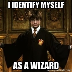 Harry Potter Come At Me Bro - i IDENTIFY MYSELF AS A WIZARD