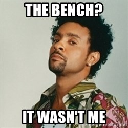Shaggy. It wasn't me - The Bench? It Wasn't me
