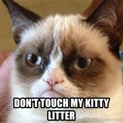 Angry Cat Meme -  don't touch my kitty litter