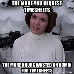 princess leia - The more you request timesheets the more hours wasted on ADMIn for TIMESHEETS