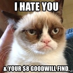 Grumpy Cat 2 - i hate you & your $8 goodwill find.