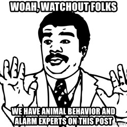 Woah watch out we got a badass over here - WOAH, Watchout folks  we have animal behavior and alarm experts on this post