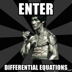 Bruce Lee Figther - Enter Differential equations