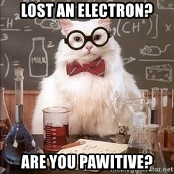 Chemistry Cat - Lost an electron? Are you pawitive?