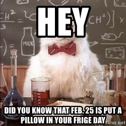 Chemistry Cat - hey did you know that feb. 25 is put a pillow in your frige day