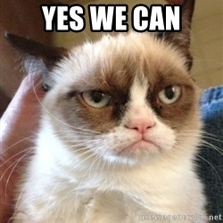 Grumpy Cat 2 - Yes we can