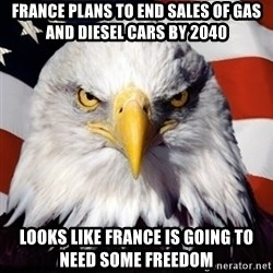 Freedom Eagle  - France Plans to End Sales of Gas and Diesel Cars by 2040 looks like france is going to need some freedom