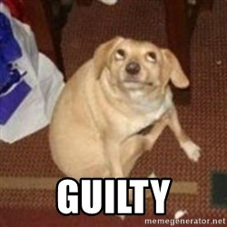 Oh You Dog -  guilty