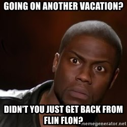 kevin hart nigga - Going on another vacation? Didn't you just get back from fLIN FLON?
