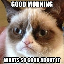 Angry Cat Meme - good morning whats so good about it