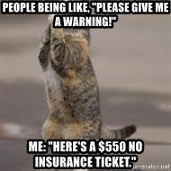 "Begging Cat - People being like, ""please give me a warning!"" Me: ""Here's a $550 no INSURANCE TICKET."""