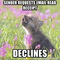 Baby Insanity Wolf - Sender requests email read receipt declines