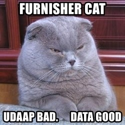 Serious Cat - Furnisher cat Udaap bad.      data good