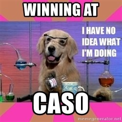 I have no idea what I'm doing dog - Winning at caso