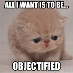 Super Sad Cat - All I want is to be... Objectified