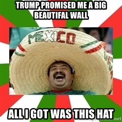 Sombrero Mexican - trump promised me a big beautifal wall All i got was this hat