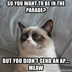 Grumpy cat 5 - So you want to be in the parade? But you didn't send an ap.... meaw