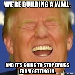 DJT eat shit - We're Building a wall, and it's going to stop drugs from getting in.