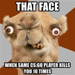 Crazy Camel lol - That face when same cs:go player kills you 10 times