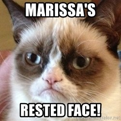 Angry Cat Meme - Marissa's rested face!