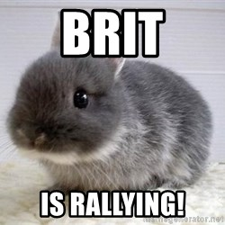 ADHD Bunny - Brit Is rallying!