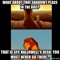 Lion King Shadowy Place - What about that shadowy place in the Boc? That is SFC Hallowell's desk, you must never go there...