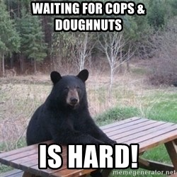 Patient Bear - Waiting for cops & doughnuts Is hard!