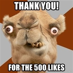 Crazy Camel lol - Thank you! for the 500 likes