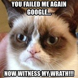 Angry Cat Meme - You failed me again google... now witness my wrath!!!