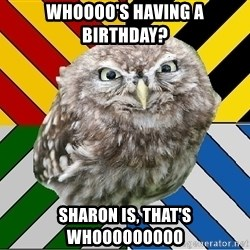 JEALOUS POTTEROMAN - Whoooo's having a birthday? Sharon is, that's Whooooooooo