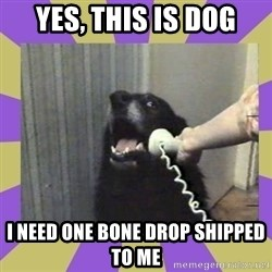 Yes, this is dog! - Yes, this is dog i need one bone drop shipped to me