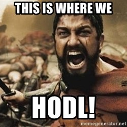 300 - This Is Where we Hodl!