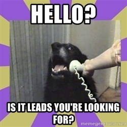 Yes, this is dog! - Hello? is it leads you're looking for?