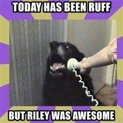Yes, this is dog! - Today has been ruff but Riley was awesome