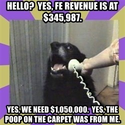 Yes, this is dog! - Hello?  Yes, FE revenue is at $345,987. Yes, we need $1,050,000.  yes, the poop on the carpet was from me.