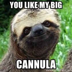 Sarcastic Sloth - You like my big Cannula