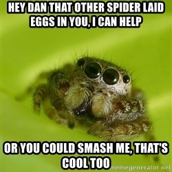 The Spider Bro - Hey dan that other spider laid eggs in you, i can help Or you could smash me, that's cool too
