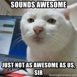 Serious Cat - Sounds Awesome Just not as awesome as us, Sir