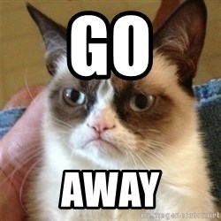 Grumpy Cat  - go away