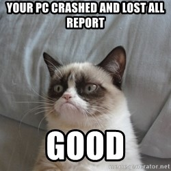 Grumpy cat good - Your pc crashed and lost all report good