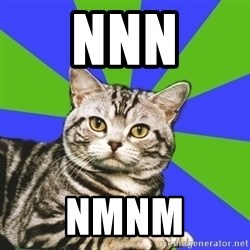 Introvert Cat - nnn nmnm