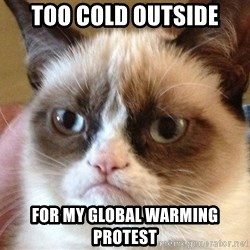 Angry Cat Meme - too cold outside for my global warming protest