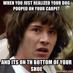 Conspiracy Keanu - when you just realized your dog pooped on your carpet and its on th bottom of your shoe