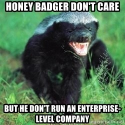 Honey Badger Actual - HONEY BADGER DON'T CARE BUT HE DON'T RUN AN ENTERPRISE-LEVEL COMPANY